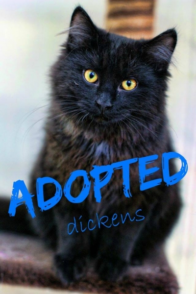 Dickens - ADOPTED - January 24,2017