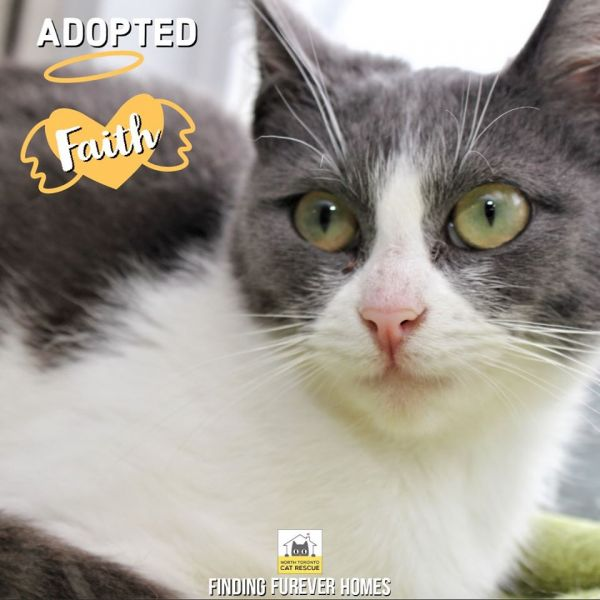 Faith-Adopted-on-May-17-2020-with-Hope