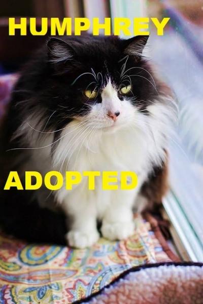 Humphrey - Adopted - June 7, 2018