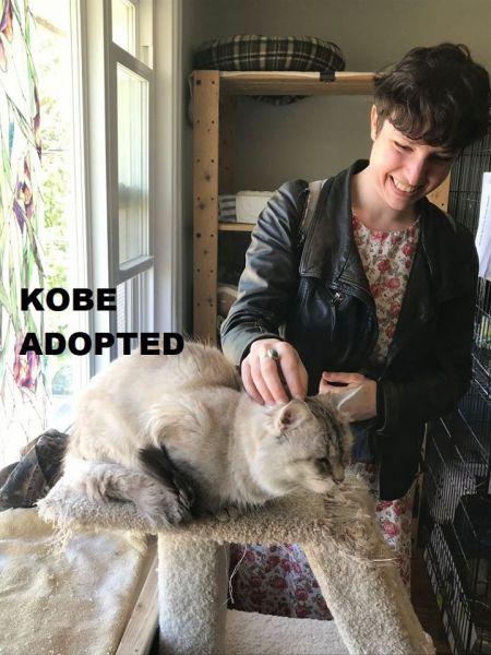 Kobe-Adopted-in-2020