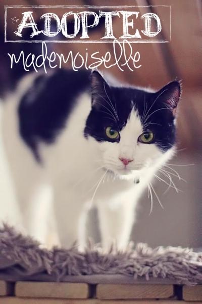 Mademoiselle2