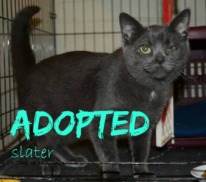 Slater - Adopted - June 12,2017