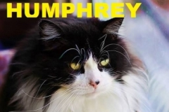 Humphrey - Adopted - June 7, 2018