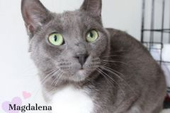 Magdalena-Adopted-on-August-1-2019-with-Antonella