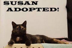 Susan-Adopted-on-March-9-2019