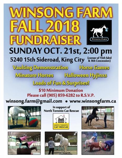 Fall Fundraiser Flyer