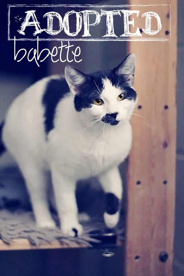 Babette2