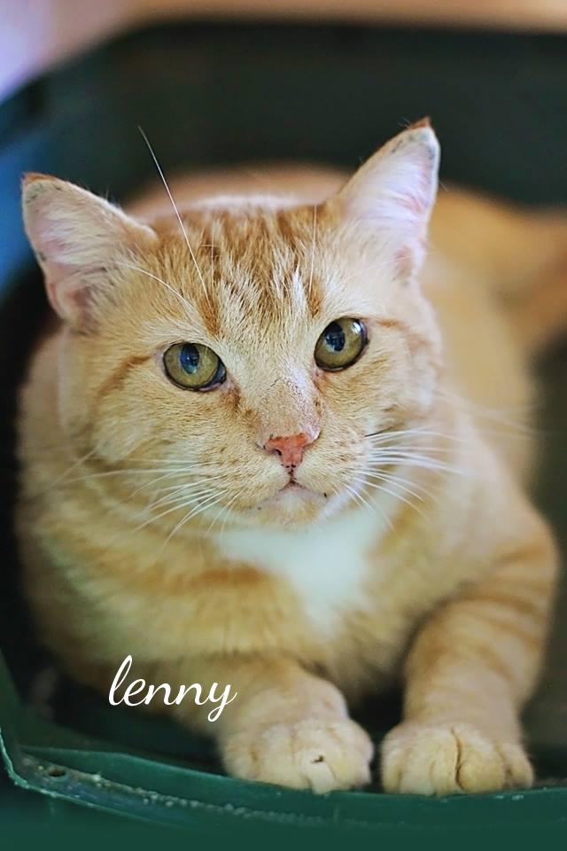 Lenny1
