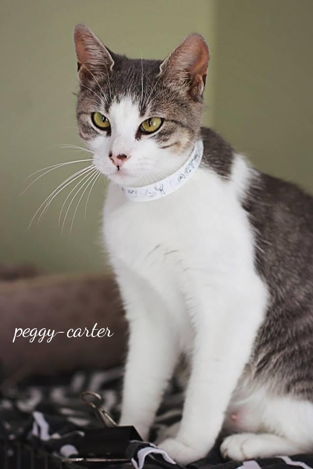 Peggy-Carter3
