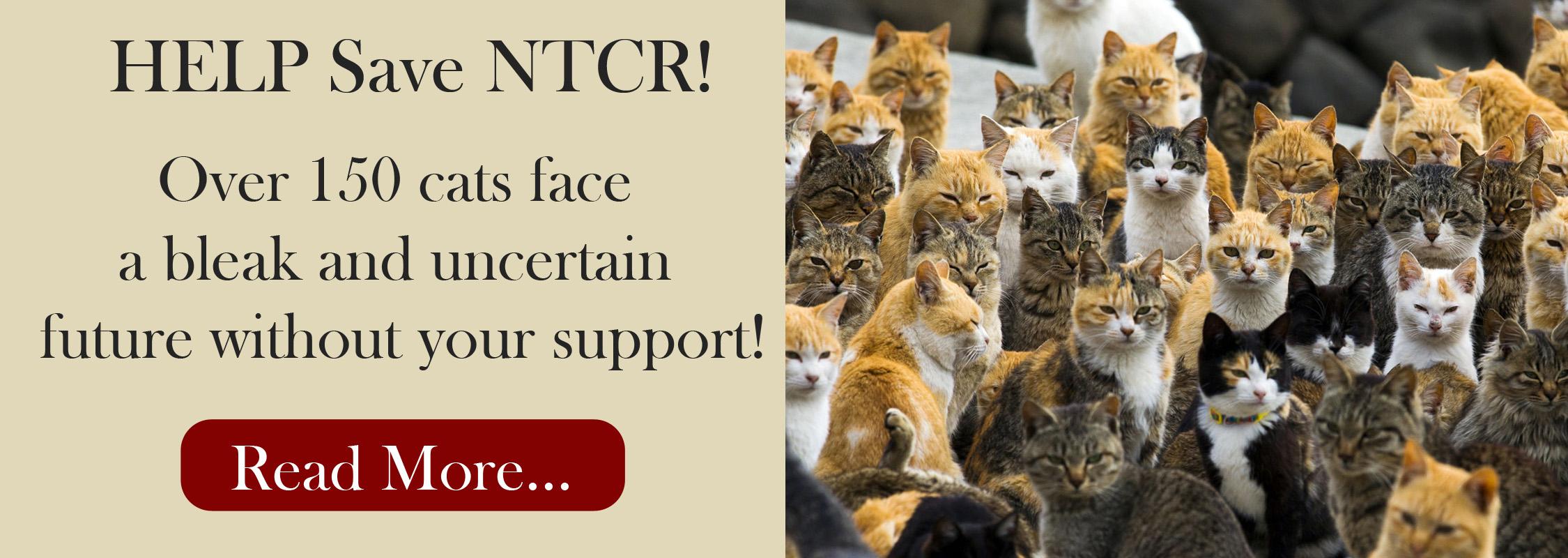 Save NTCR!