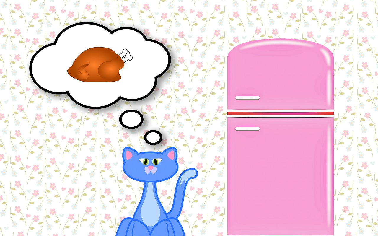 Cats and Coprophagia