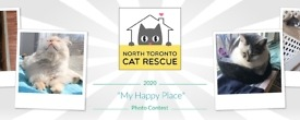 "GOGO Photo Contest 2020 – ""My Happy Place"""